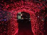 夜のトンネル.jpg