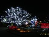 夜の公園.jpg