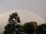 虹の魔法.jpg