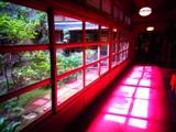 赤い廊下.jpg