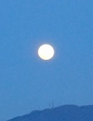 おやすみ満月2.jpg